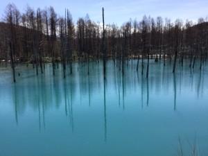 青い池 (2)